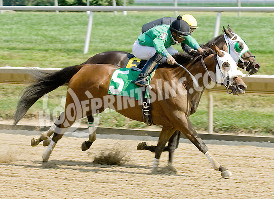 K One Kitty winning at Delaware Park on 8/8/11
