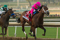 ARCADIA, CA  DECEMBER 26:  #1 City of Light ridden by Drayden Van Dyke wins the Malibu Stakes (Grade l)i on December 26, 2017 at Santa Anita Park in Arcadia, CA. (Photo by Casey Phillips/ Eclipse Sportswire/ Getty Images)