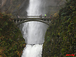 Water Falls & Rivers