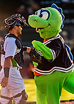 24 August 2019: Vermont Lake Monsters Mascot Champ gets fist bump from catcher Jose Rivas prior to a game against the Lowell Spinners at Centennial Field in Burlington, Vermont. The Lake Monsters fell to the Spinners 3-2 in NY Penn League action. Mandatory Credit: Ed Wolfstein Photo *** RAW (NEF) Image File Available ***
