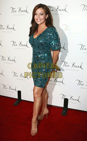 26 January 2008 - Las Vegas, Nevada - Robin Meade. The Bank Night Club Grand Opening inside The Bellagio Hotel Casino. Photo Credit: MJT/AdMedia
