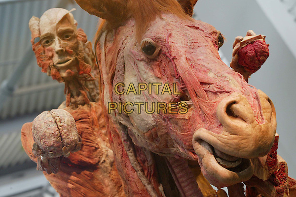 BODY WORLDS  .Gunther von Hagens updates exhibition with 9 new plastinates at the Atlantis Gallery, Brick Lane.Ref:20020712.www.capitalpictures.com.sales@capitalpictures.com.© Capital Pictures