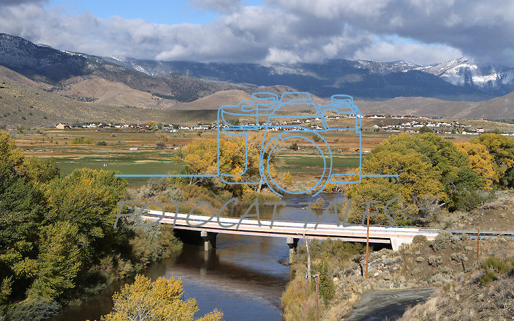 Fall colors along the Carson River in Carson City, Nev., on Oct. 25, 2010..Photo by Cathleen Allison