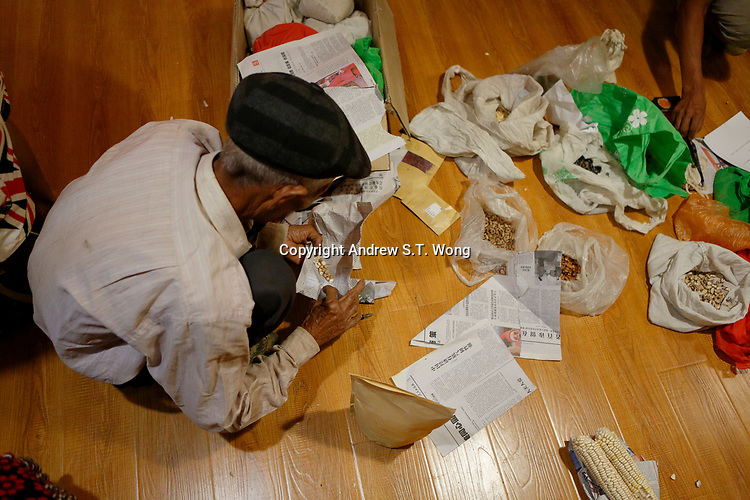 Wumu Village, Yulong County, Yunnan Province, China - An elderly villager wraps up seeds of native vegetation distributed by Dongba priest He Jixian of the Naxi ethnic group during the inaugural meeting of their agricultural cooperative, June 2019