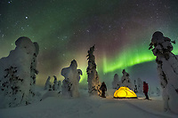 Two campers watch the northern lights  by yellow tent at a winter camp in the boreal forest, interior, Alaska. stands by yellow tent at a winter camp in the boreal forest, interior, Alaska.