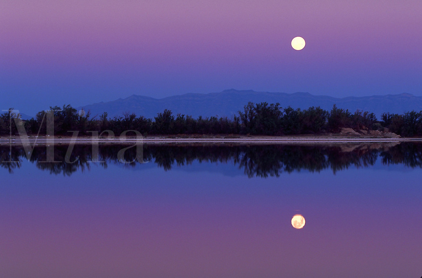 Full moon at dawn, Lake Holoman, New Mexico