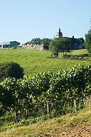 IGPN Coteaux du Saillant-Vézère