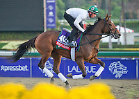 Emollient, trained by Bill Mott, trains for the Breeders' Cup Filly & Mare Turf at Santa Anita Park in Arcadia, California on October 30, 2013.