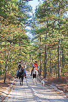 Horseback Riders, Wharton State Forest, New Jersey