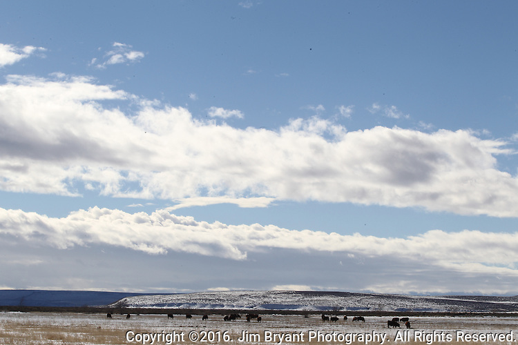 Oregon High plains between Burns and Bend. ©2016. Jim Bryant Photo. All Rights Reserved.