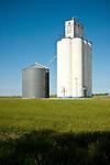 Concrete grain elevator and corrugate storage tank, unripe wheat field, Farmers Co-op, Aline, Okla.
