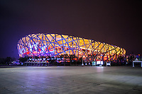 "Beijing National Stadium (a.k.a. ""Bird's Nest"") at night, Beijing, China"