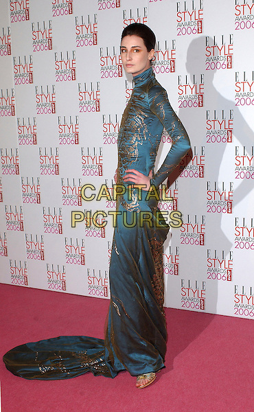 ERIN O'CONNOR.The Elle Style Awards 2006, Atlantis Gallery, Old Truman Brewery, Brick Lane, London, UK..February 20th, 2006 .Ref: BEL.full length hand on hip blue pattern print gold dress .www.capitalpictures.com.sales@capitalpictures.com.© Capital Pictures.