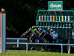 September 7, 2019 : Scenes from during racing at Kentucky Downs in Franklin, Kentucky. Scott Serio/Eclipse Sportswire/CSM