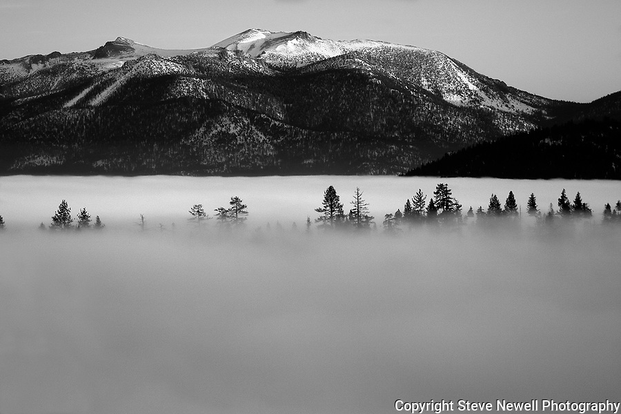 &quot;Enchanted Forrest&quot; Freel Peak- Lake <br />
