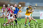 Keane's Super Valu Minor Hurling Championship semi-finals: Causeway vs Abbeydorney / Tralee Parnells at Austin Stack Park on Saturday. Pictured , Causeway's Gavin Dooley