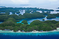 Palau coral reef photos