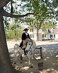General George Washington on his horse Colonial Williamsburg Virginia, Williamsburg Virginia 1699 to 1780 capital Commonwealth of Virginia molding democracy for the United States of America.  Williamsburg was the center of government, education and culture in the Colony of Virginia, george Washington, Thomas Jefferson, Patrick Henry, James Monroe, Hames Madison, George Wythe, Peyton Randolph and others molded democracy for the United States, George Washington,