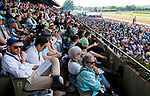 ELMONT, NY - JUNE 09: Fans watch the Runhappy Metropolitan Handicap on Belmont Stakes Day at Belmont Park on June 9, 2018 in Elmont, New York. (Photo by Scott Serio/Eclipse Sportswire/Getty Images)