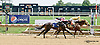Salem Harbor winning at Delaware Park on 7/31/14
