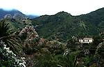 Abandoned cottage amongst palm trees, Vallehermoso,