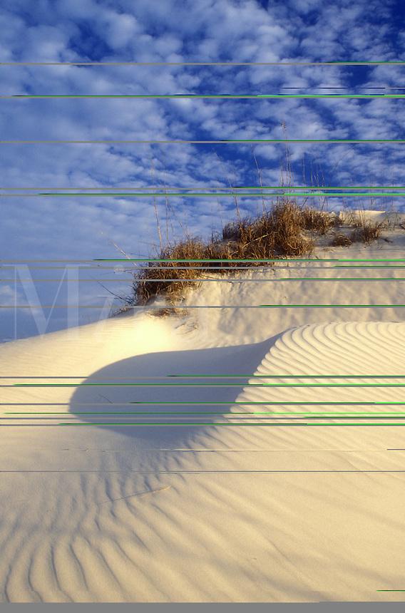 AJ1546, sand dune, Cumberland Island, sand, Georgia, Wind swept sand dunes on the white sand beaches of Cumberland Island National Seashore, Georgia.