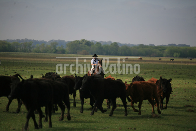 Estancia El Ombu en San Antonio de Areco, a cien kilometros de Buenos Aires. Gracias al boom turistico que vive la Argentina, muchas estancias tradicionales abrieron sus puertas para alojar turistas, que visitan el lugar para conocer a los gauchos, sus bailes tipicos, su destreza con el caballo y su musica, ademas de disfrutar comidas como el asado y las empanadas.*El Ombu Farm in San Antonio de Areco, 60 miles from Buenos Aires. During the touristic boom that lives Argentina, many traditional estancias of the pampas opened their doors to receive foreign visitors, who spend some days knowing the gaucho (horseman) culture, music, dances and their skill with horses, besides enjoying local food as asado (barbeque) and empanadas.
