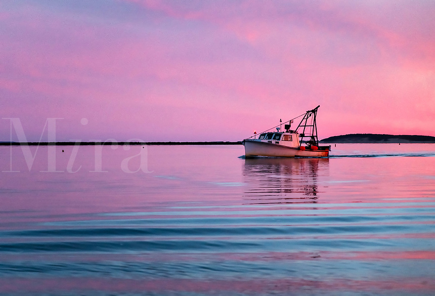 Commercial fishing boat returns to harbor at sunset, Wellfleet, Cape Cod, Massachusetts, USA.