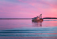 Commercial fishing boat returns to harbor at sunset, Wellfleet, Cape Cod, Massachusetts, USA.