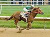 Last Boot winning at Delaware Park on 10/3/12