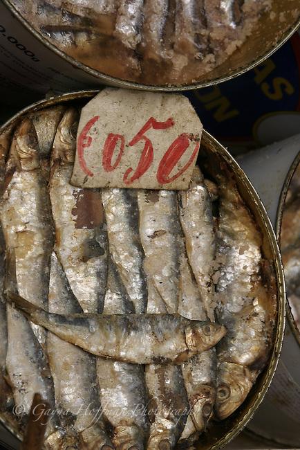 Sardines packed in tin. Sicily, Italy