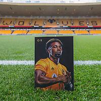 2019 Premier League Football Wolves v Southampton Oct 19th