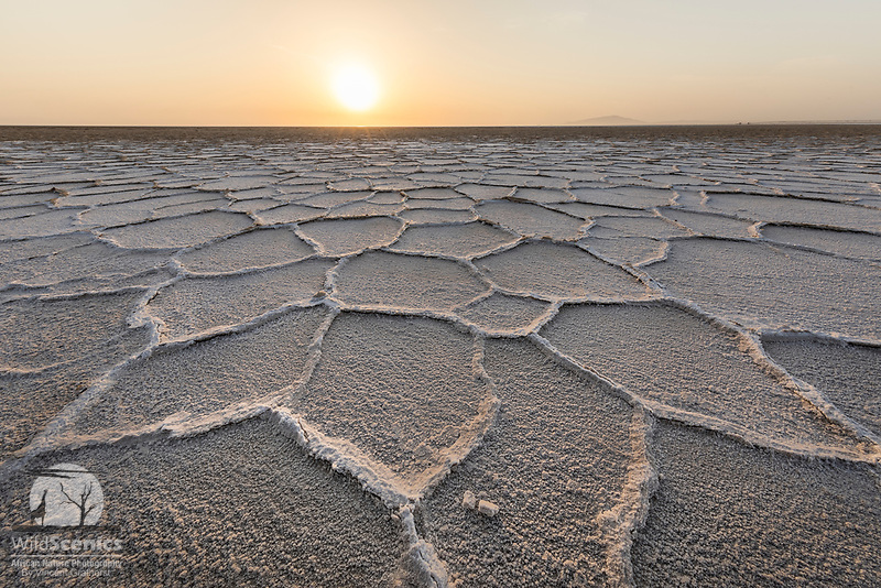Patterns on the salt flats of Lake Asale in the Danakil Depression, Ethiopia, Africa