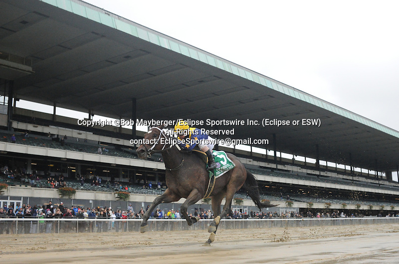 Nickname (no. 5) ridden by Javier Castellano and trained by Steve Assmussen, wins the grade 1 Frizette for two year old fillies on October 3, 2015 at Belmont Park in Elmont (Bob Mayberger/Eclipse Sportswire)