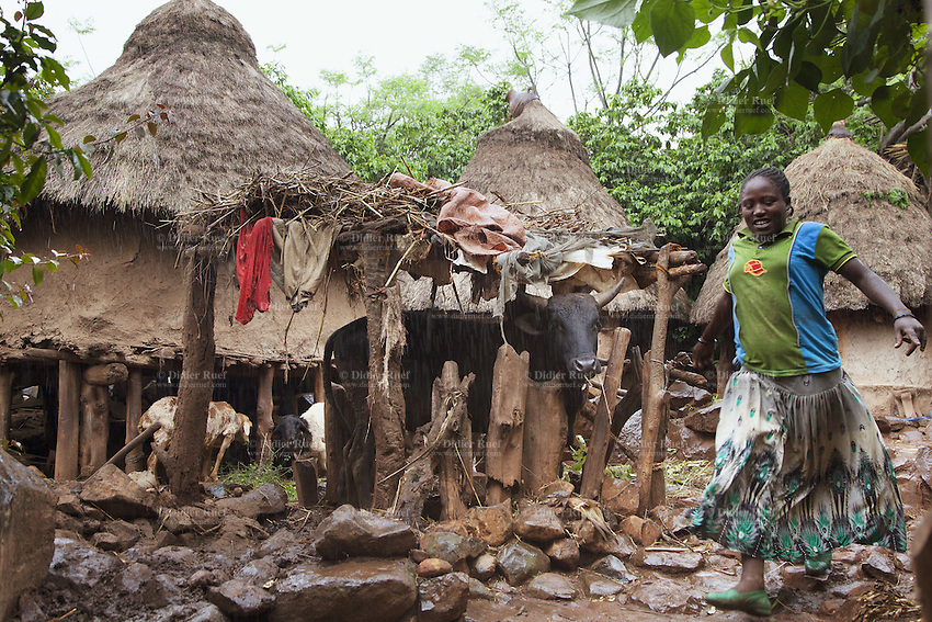Ethiopia. Southern Nations, Nationalities, and Peoples' Region. Karat village. Konso tribe. The Konso live in an isolated region of the basalt hills. The area is made up of hard rocky slopes. Konso villages are usually fortified by a stone wall used as a defensive measure. They are split up into communities, with each community having a main hut. The Konso are mixed agriculturists using their dry and infertile lands to grow crops. Animal dung is used to fertilize the grounds. A young Konso woman, a black cow and two sheeps on a rainy day in a private hut's courtyard. The Konso, also known as the Konzo, are a Cushitic-speaking ethnic group. Although the Konso people have many customs dating back hundreds of years, it is not uncommon for them to be seen wearing western clothing. The Omo Valley, situated in Africa's Great Rift Valley, is home to an estimated 250,000 individuals of the Konso tribe. Southern Nations, Nationalities, and Peoples' Region (often abbreviated as SNNPR) is one of the nine ethnic divisions of Ethiopia. 13.11.15 © 2015 Didier Ruef