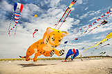 USA, Washington State, Long Beach Peninsula, International Kite Festival, sending up a large red, white and blue kite