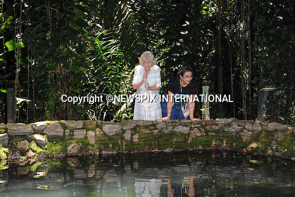 "CAMILLA, DUCHESS OF CORNWALL.Visits the National Institute for Amazon Research.Camilla toured the jungle/rainforest including the ""Science Woods"", feed turtles in the lake and also marveled at the size of the electric eels in a pond.The Duchess was wearing an Anna Valentine silk shift dress (Pale blue with white beaded detail)..Forth day Brazil on the second leg of their South American Tour, Manaus, Brazil_14/03/09.......Mandatory Credit Photo: ©DIAS-NEWSPIX INTERNATIONAL..Please telephone : +441279324672 for usage fees..**ALL FEES PAYABLE TO: ""NEWSPIX INTERNATIONAL""**..IMMEDIATE CONFIRMATION OF USAGE REQUIRED:.Newspix International, 31 Chinnery Hill, Bishop's Stortford, ENGLAND CM23 3PS.Tel:+441279 324672  ; Fax: +441279656877.Mobile:  07775681153.e-mail: info@newspixinternational.co.uk"