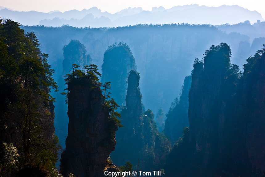 Huangshan pines and peaks.Rock pinnacles in Zhangjiajie National Forest Park,.People's Republic of China.Wulingyuan National Park UNESCO WHS.Rock formations of  quartz-sandstone