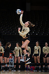 Caroline Rassenfoss (18) of the Wake Forest Demon Deacons serves against the USC Upstate Spartans in the LJVM Coliseum on September 9, 2017 in Winston-Salem, North Carolina.  The Demon Deacons defeated the Spartans 3-2.   (Brian Westerholt/Sports On Film)