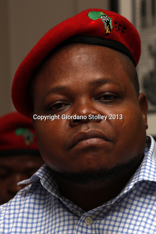 DURBAN - 14 August 2013 - Sipho Mbata, a member of the National Command Team of the newly formed Economic Freedom Fighters political party at the party's first press briefing in KwaZulu-Natal. EFF was founded by expelled ANC Youth League president Julius Malema. Picture: Giordano Stolley