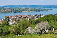 CHE, Schweiz, Kanton Thurgau, Steckborn, direkt am Untersee, dem westlichen Teil des Bodensees | CHE, Switzerland, Canton Thurgau, Steckborn at Lake Constance