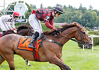 Show Court (no. 7), ridden by Michael Mitchell and trained by Archibald Kingsley, Jr., wins the A.P. Smithwick Memorial Handicap at Saratoga Racecourse, Saratoga Springs.   The winner finished a length in front of Iranistan (no. 1) in the 2 1/16 mile hurdles race against six opponents.  (Bruce Dudek/Eclipse Sportswire)