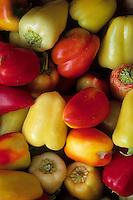 Europe/Croatie/Dalmatie/ Ile de Vis/Vis: Piments sur un étal du marché paysan