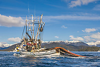 Commercial fishing vessel Lake Bay sets a net in the first 2006 Sitka Sac Roe Herring fishery opener on the north side of Middle island in Sitka Sound, March 2006.