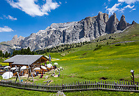 Italy, South Tyrol (Trentino - Alto Adige), Dolomites, near Selva di Val Gardena: alpine pasture hut 'La Malga Sella' with Sella Group at Sella Pass Road | Italien, Suedtirol (Trentino - Alto Adige), oberhalb von Wolkenstein in Groeden: bewirtschaftete Almhuette Malga Sella Alm vor der Sellagruppe an der Sella-Joch-Passstrasse