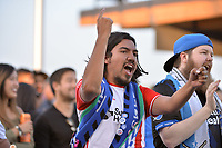 San Jose, CA - Saturday August 18, 2018: Fans during a Major League Soccer (MLS) match between the San Jose Earthquakes and Toronto FC at Avaya Stadium.