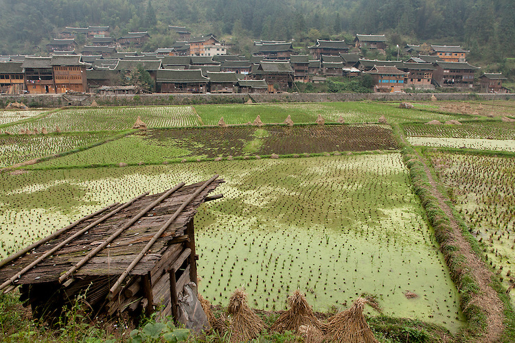 Small wooden villages are scattered throughout the mountains of Guizhou with rice paddies always nearby.