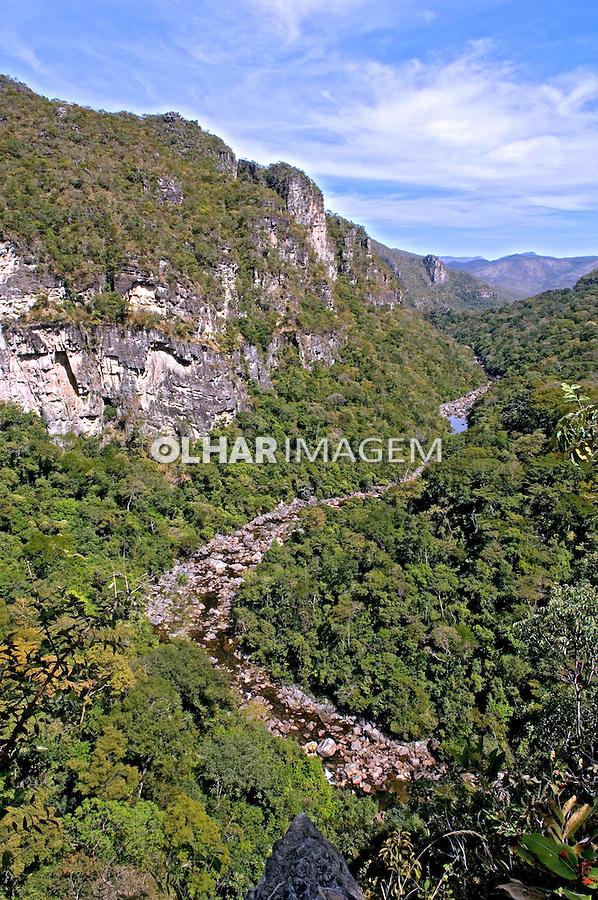 Vegetação de cerrado no Parque Nacional da Chapada dos Veadeiros. Goiás. Foto de João Caldas.