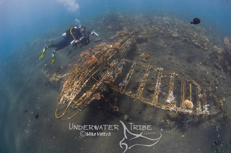 Artificial reef made to grow hard corals, in the shape of a plane, Tulamben, Bali, Indonesia, Pacific Ocean