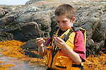 Georgie Investigating Seaweed